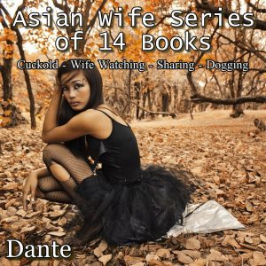 Asian wife series 14 books