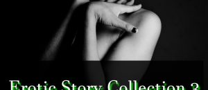 Erotic Story Collection 3