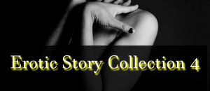 Erotic Story Collection 4