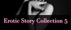 Erotic Story Collection 5