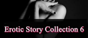 Erotic Story Collection 6